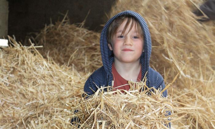 Un enfant joue dans la paille pour l'anniversaire à la ferme