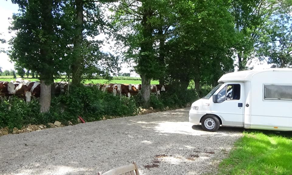 Accueil de Camping Cars, un espace dédié au camping car au coeur de l'aveyron à proximité de Rodez avec de nombreuses commodités (sanitaires, vidange, électricité, ...)